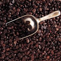 Печень человека тоже любит кофе