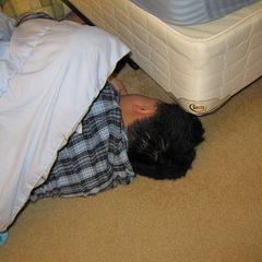 9 способов подружиться с дремой