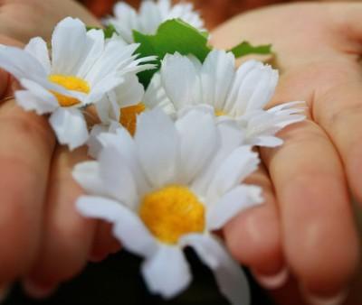Эффективный крем от сухости рук