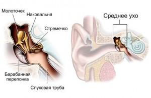 bolezni_uxa