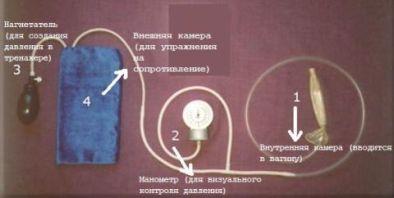 тренажер Муранивского