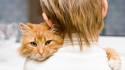 Аллергическая сыпь у детей: причины и лечение