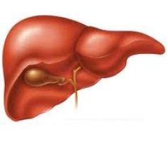 лабораторные синдромы гепатита