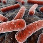 Симптомы туберкулеза у детей: как вовремя распознать недуг?