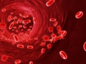 Гемоглобин переносит кислород и двуокись углерода