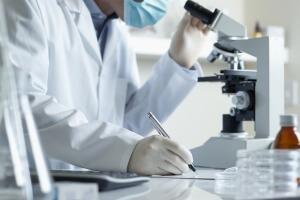 Соскоб экземы изучают под микроскопом