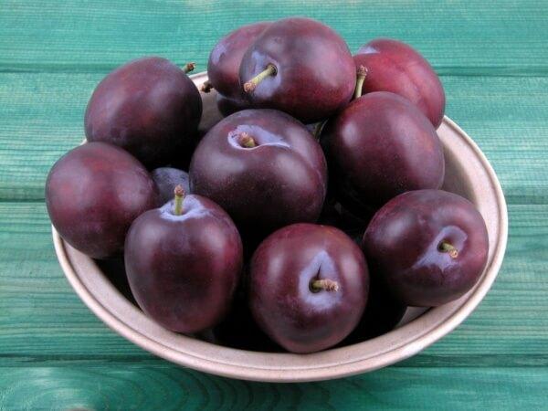 Слива фрукты для беременных 36