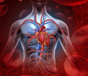 Стенокардию может сопровождать сердечная недостаточность