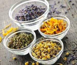 Для лечения аллергии применяются лекарственные травы