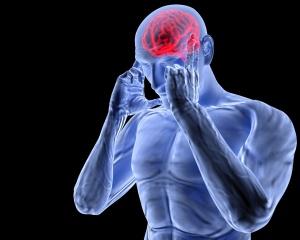 Продолговатый мозг осуществляет деятельность через центры