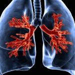 Очистка легких курильщика: проверенные рецепты