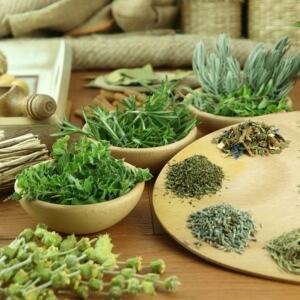 Для лечения народными средствами применяются отвары растений