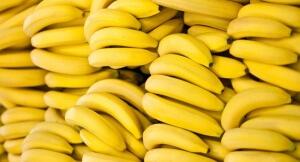 Польза бананов объясняется их особым составом