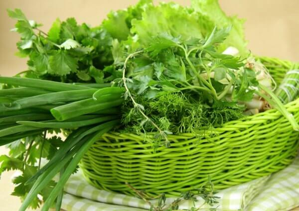 Зелень - прекрасное дополнение к любым блюдам
