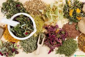 Смесь лекарственных трав поможет повысить тонус всего организма